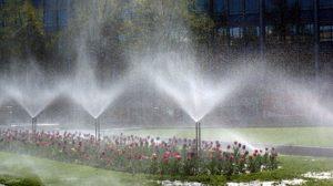 irrigation tips